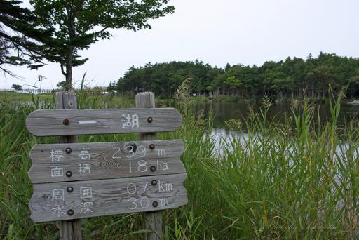 知床五湖・一湖2.jpg