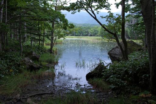 知床五湖・二湖.jpg
