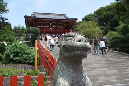 鶴岡八幡宮・狛犬.jpg